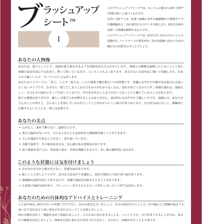 恋愛・結婚情報サービス エンジェル ブラッシュアップシート1