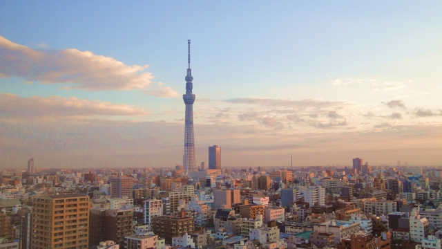 東京タラレバ娘の感想
